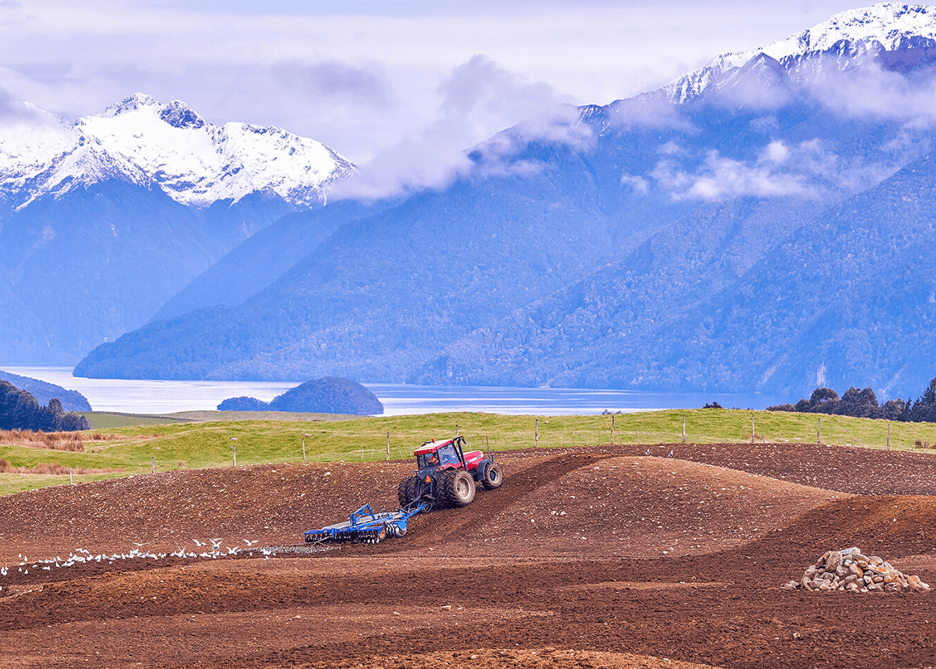 Red tractor in a paddock pulling blue Grizzly discs across the soil