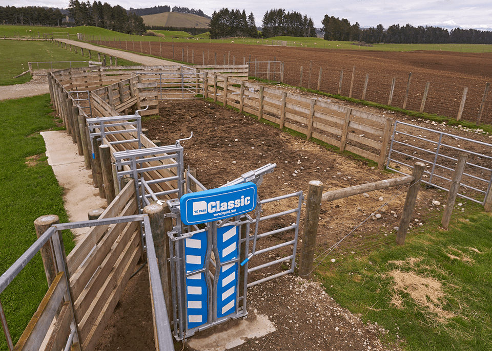 Farm yards built by Walsh Contracting Te Anau Limited